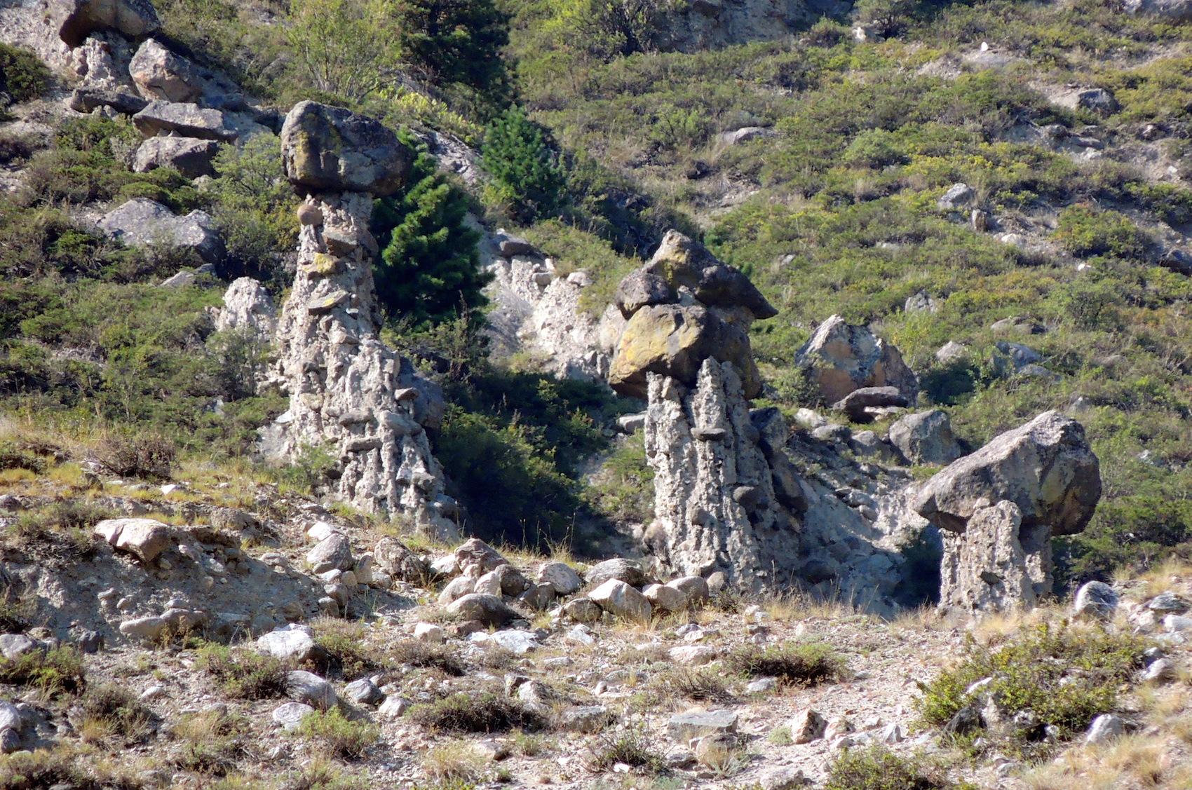 Чулышманская долина Грибы каменные 05 авг. 2015 г., 15-05.JPG