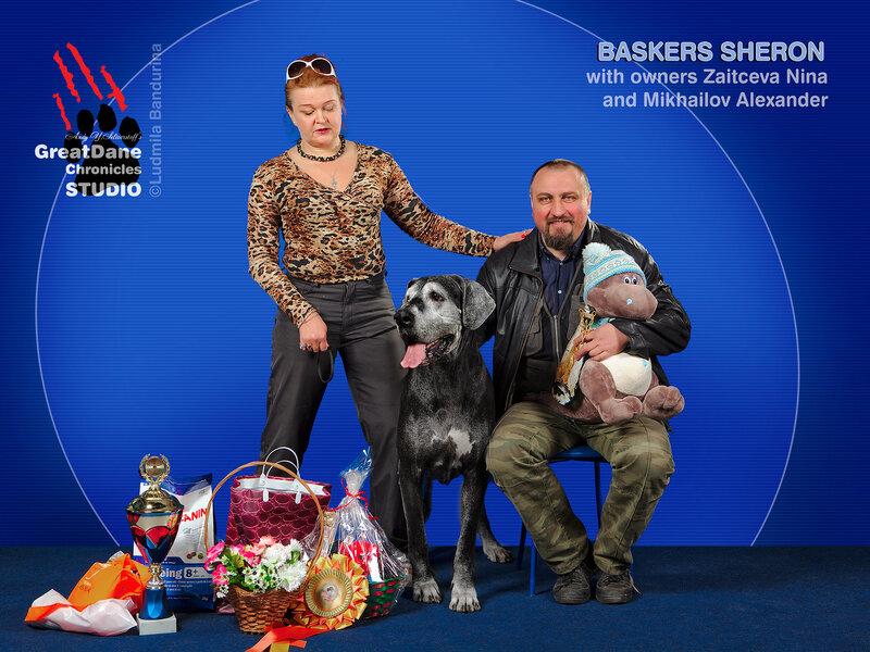 №89 БАСКЕРС ШЕРОН — Лучший ветеран выставки (BISSV-1)