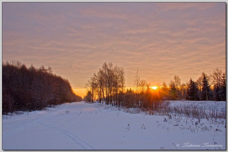 Лаконичность северных пейзажей