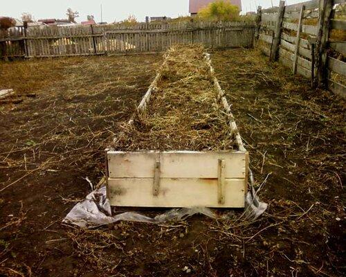 О древесной золе и её влиянии на огород