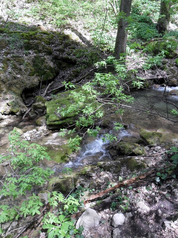 У реки, окрестности Горячего Ключа, весна