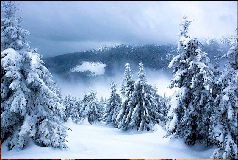 Природа, пейзаж, фото из интернета (239).jpg