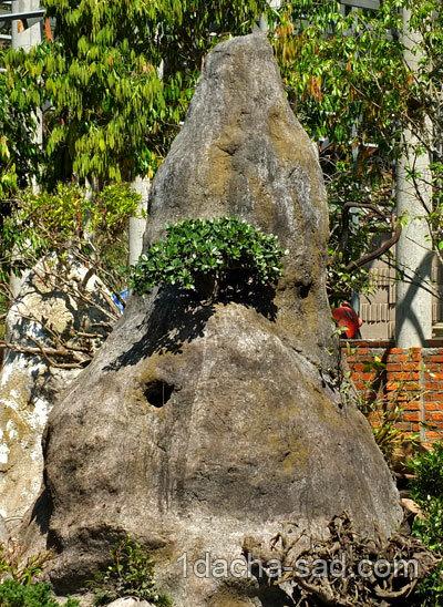 Камень валун в ландшафтном дизайне
