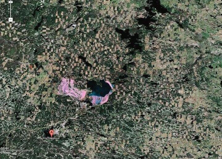Вырубленный лес Карелии