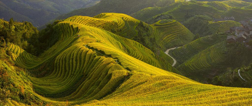 Рисовые террасы в деревне Пиньянь