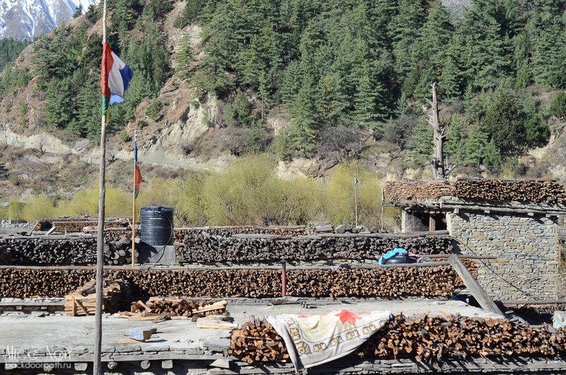 запасы дров на крышах в непальской деревне кобанг, тукуче, гималаи, непал