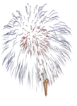 mds7723 Firework.png
