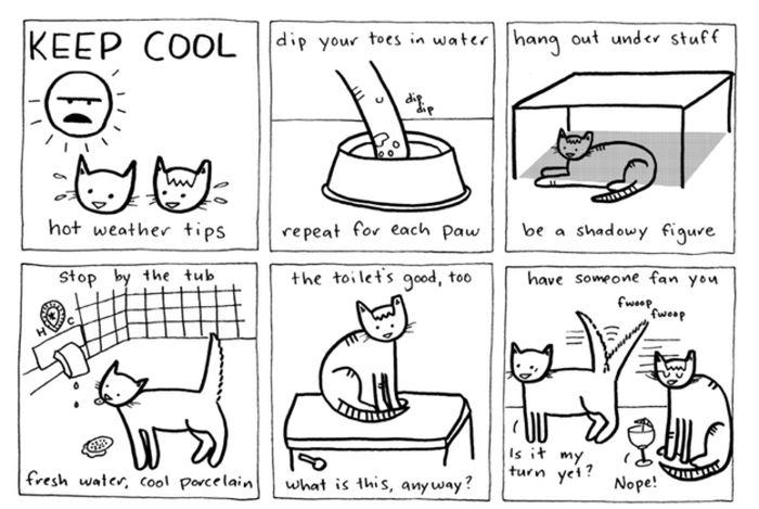 Смешные комиксы про котов на английском языке 0 c6d91 c8e0aeca orig