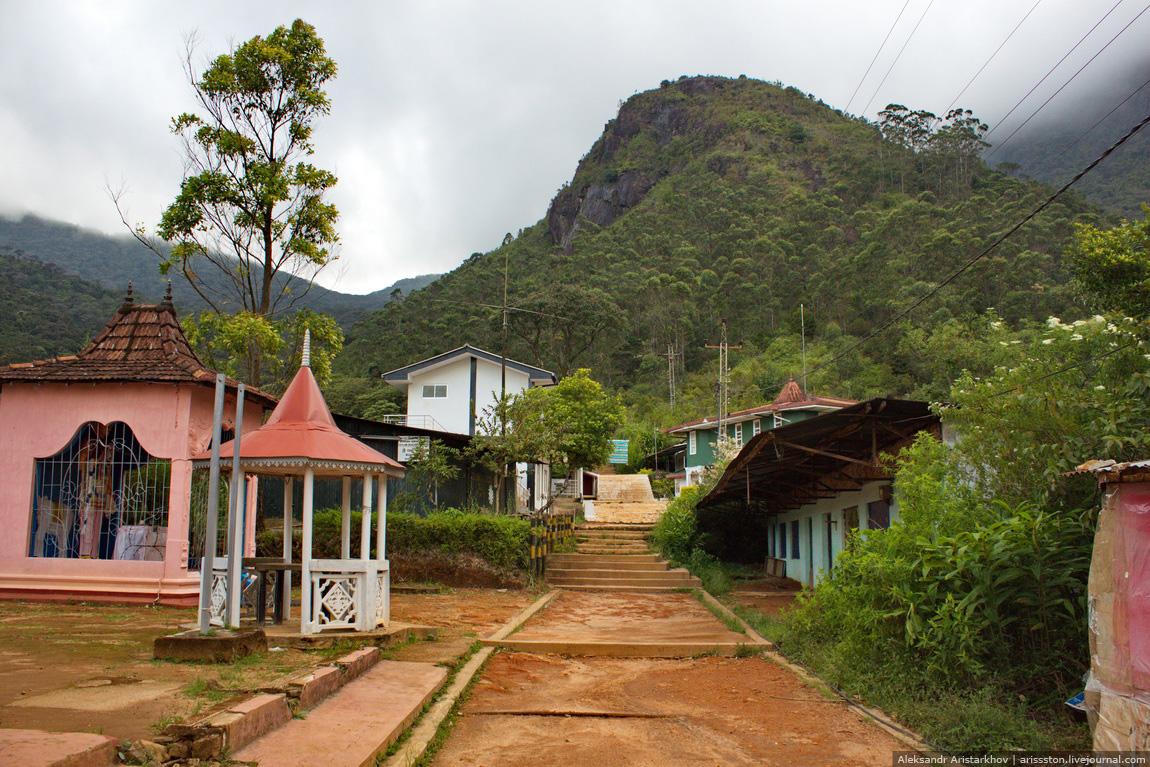 Шри-Ланка_Пик Адама_18