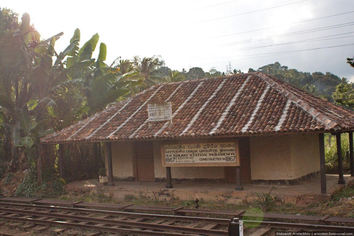 Шри-Ланка_Железная дорога_25