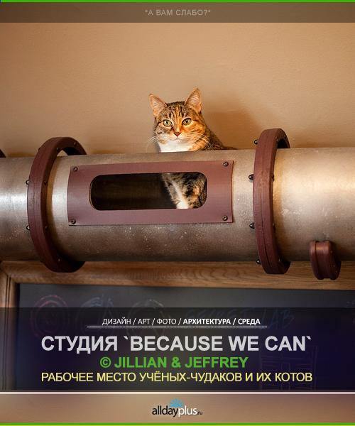 """Мастерская для учёного-чудака """"Mad Scientist Home Workshop"""" и """"Cat Transit System"""" для его кота. Дизайн-студия """"Because we can"""""""