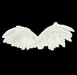 wings-(BrydkaM).png