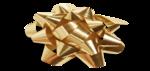 VC_Christmasrose_EL55_sh.png