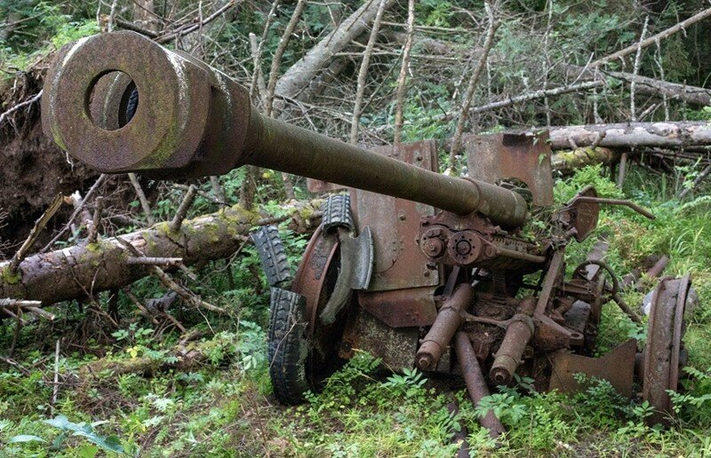 Гогланд орудие поиск.jpg