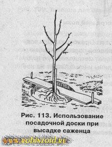 в помощь садоводу