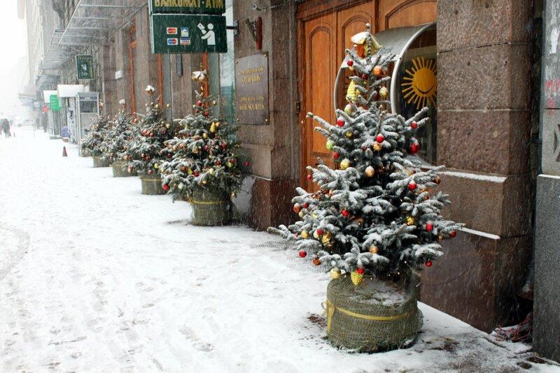 Новогодние елки перед входом в банк на Крещатике