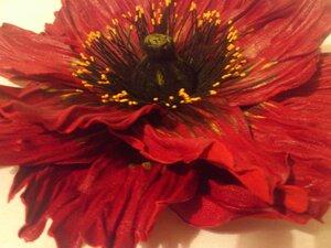 Цветы из кожи - Страница 4 0_b6182_56fbf39f_M.jpeg