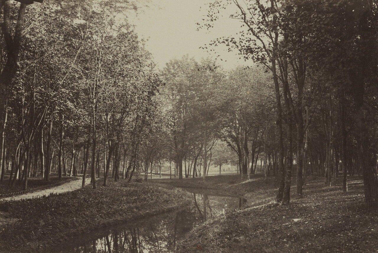 Шлюхи булонского леса 26 фотография