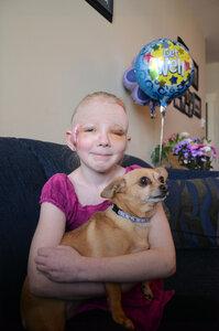 Чихуахуа спасла жизнь, вступив в схватку с бойцовской собакой