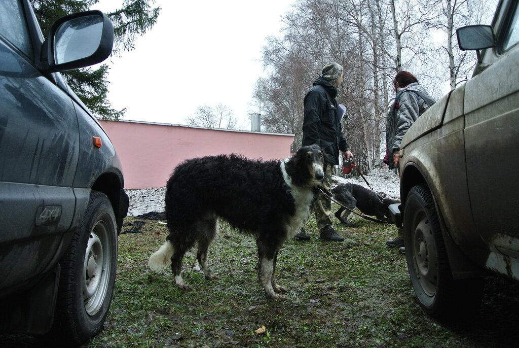 http://img-fotki.yandex.ru/get/5634/13756627.d/0_ac9f4_f44aa7ca_XXL.jpg