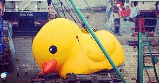 Самая большая резиновая утка