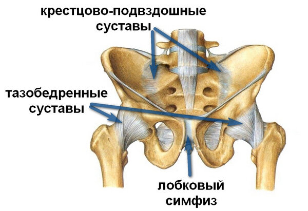 Суставы таза температура лечение локтевого сустава после вывиха