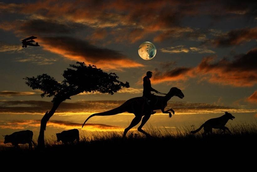 Ночь, когда я свалился с Луны. Фотоработы Влада Новикова 0 14179c 3d265d07 orig