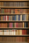 bookshelves14.png