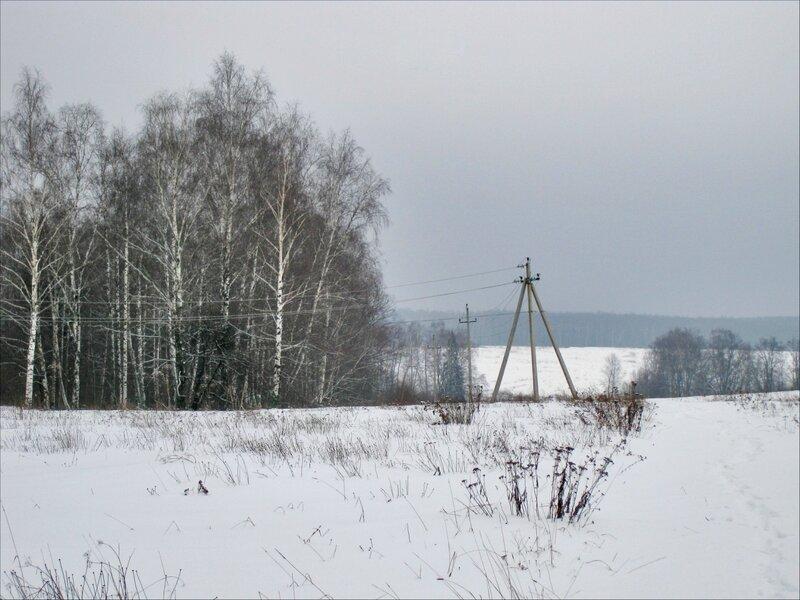 Вид в сторону Протасовских полей