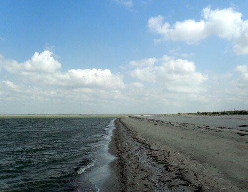 Август 2011, побережье Азовского моря
