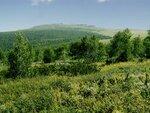Северный склон перевала Дятлова, граница криволесья.