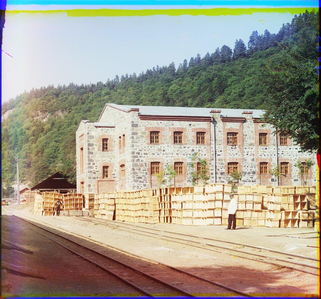 Запасный склад минеральных вод. Боржом. (вид с другой стороны)