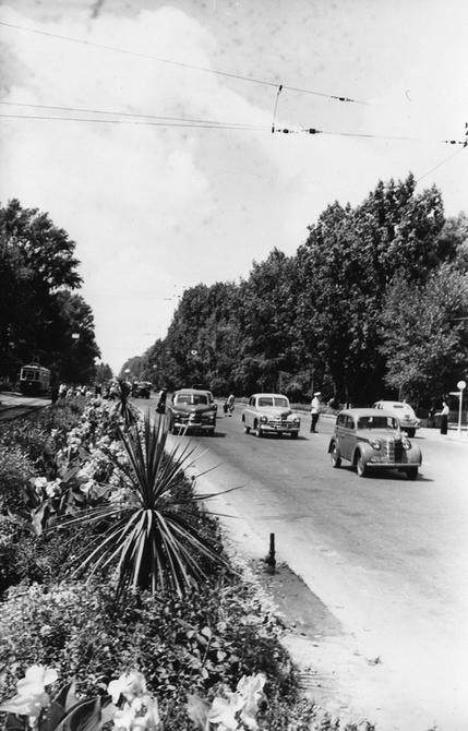 1957.07.28. Разделительная полоса на Брест-Литовском шоссе (теперь проспект Победы)