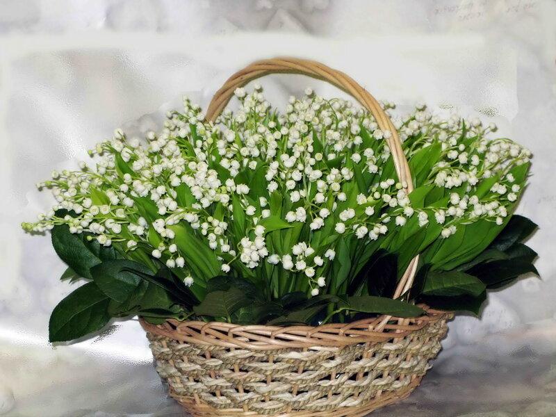Цветы картинки весенние букеты