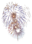 mds7721 Firework.png