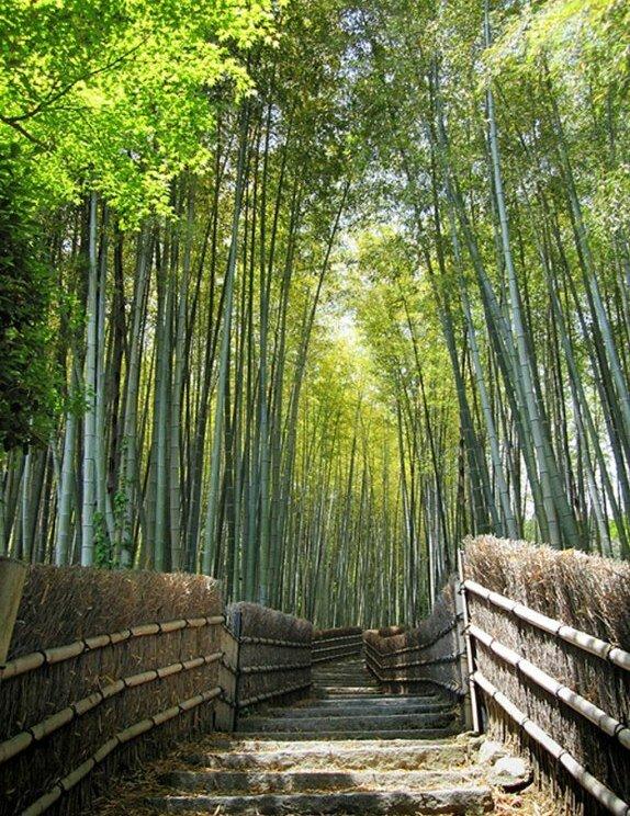 Десятка фантастических природных тоннелей