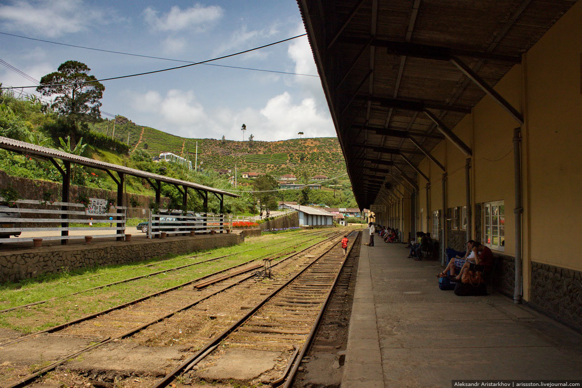Шри-Ланка_Железная дорога_04