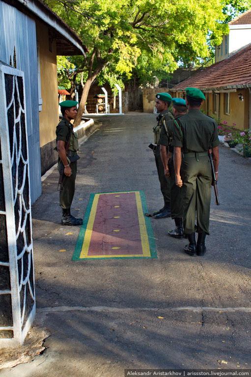 Шри-Ланка_Форт Фредерик_07