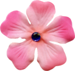 Delicious Pink (135).png