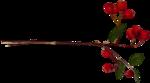 bld_amerrylittlechristmas_element (100).png