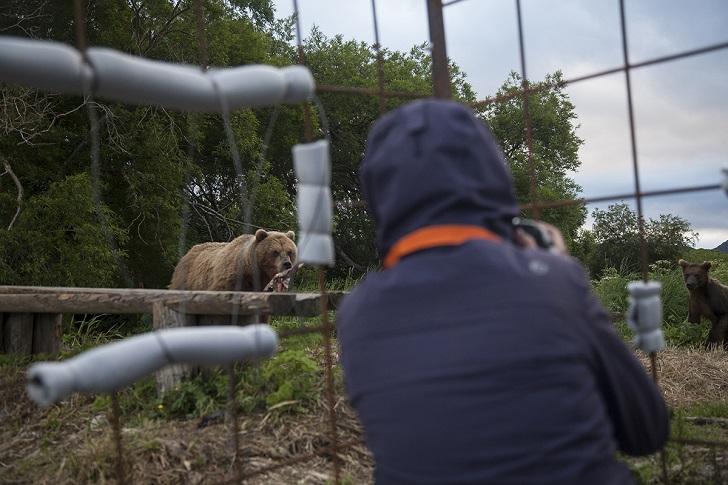 Третий день жизни в клетке на Камчатке. Зоопарк, наоборот, продолжается. Сегодня ко мне присоединила