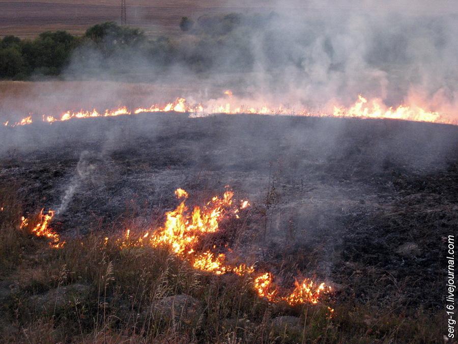 картинка степного пожара отмечают