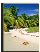 Сейшелы. Seychelles. Фото Piotr Gatlik - shutterstock