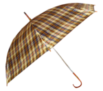 зонт (25).png