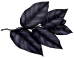 SkyScraps-Adore-Leaves5.png