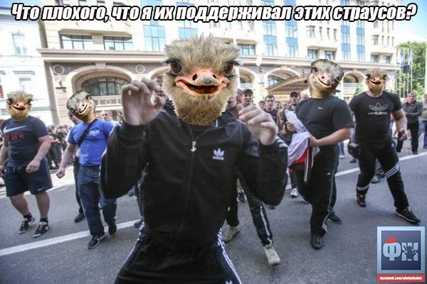 https://img-fotki.yandex.ru/get/5636/163146787.49e/0_159b51_96e34491_orig.jpg