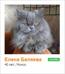 Елена Беляева (Новикова)