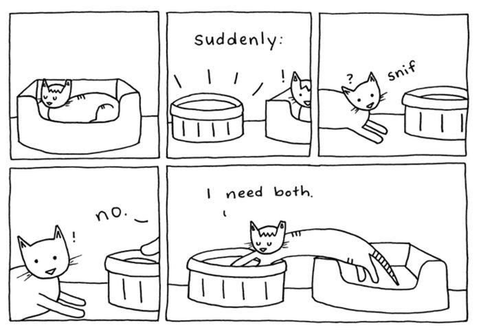 Смешные комиксы про котов на английском языке 0 c6d93 1e869d9b orig