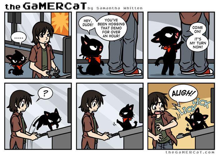 Смешные комиксы про котов на английском языке 0 c6d9d 43792c51 orig