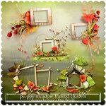 _ldw_poppymeadow_framedclusters.jpg